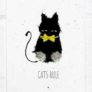 cats rule seed card